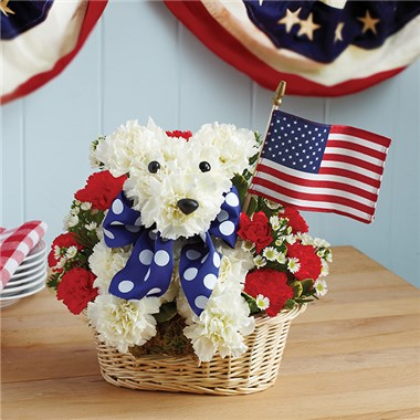 Fourth of July dog flowers