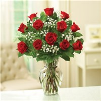 Rush One Dozen Roses Red Rose Elegance Premium
